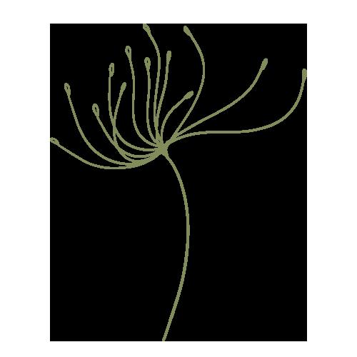dandelion-green